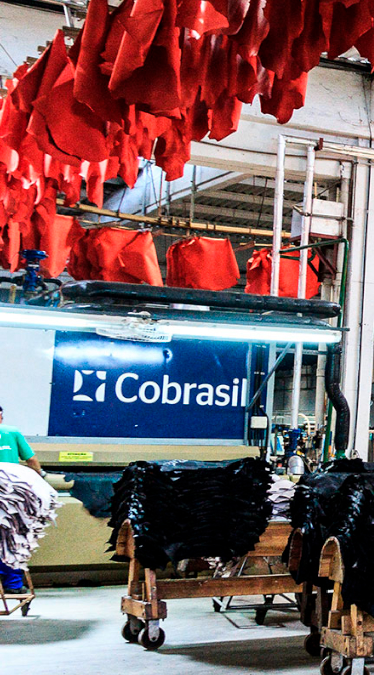 cobrasil11